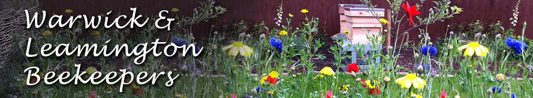 Two National hives with wild flowers in a garden.