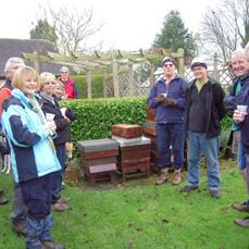 WLBK members beekeeping